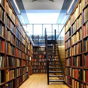 Библиотеки Пачелмы