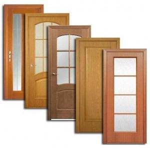 Двери, дверные блоки Пачелмы