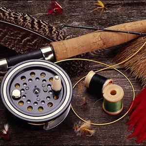 Охотничьи и рыболовные магазины Пачелмы