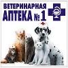 Ветеринарные аптеки в Пачелме